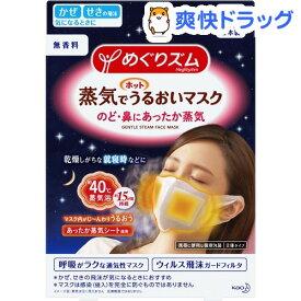 めぐりズム 蒸気でホットうるおいマスク 無香料(3枚入)【めぐりズム】