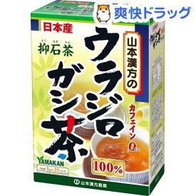山本漢方 ウラジロガシ茶100% 抑石茶(5g*20包入)