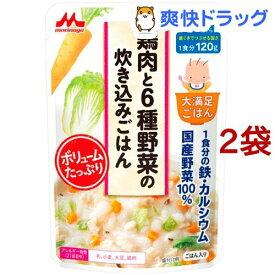 大満足ごはん 鶏肉と6種野菜の炊き込みご飯 G4(120g*2袋セット)【大満足ごはん】