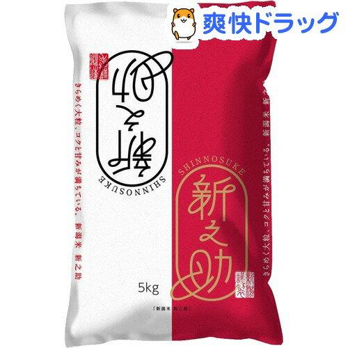 平成30年度産 新潟米 新之助(5kg)