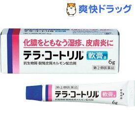【第(2)類医薬品】テラ・コートリル軟膏a(6g)