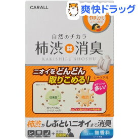 カーオール 柿渋消臭シート下 無香料(200ml)【カーオール】