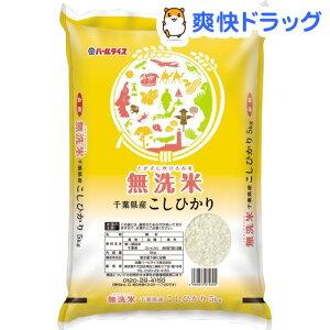 令和2年産 無洗米 千葉県産コシヒカリ(5kg)【パールライス】