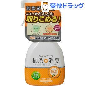 カーオール 柿渋消臭ミスト 微香シトラス(250ml)【カーオール】