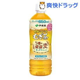 伊藤園 健康ミネラルむぎ茶 5種の健康麦 すっきりブレンド(650ml*24本入)【健康ミネラルむぎ茶】