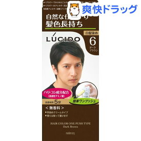 ルシード ワンプッシュケアカラー 6 ダークブラウン(50g+50g)【ルシード(LUCIDO)】[白髪染め]