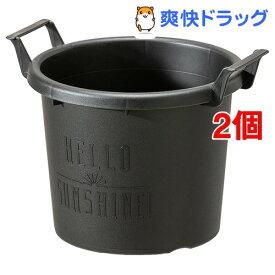 グロウコンテナ 18型 ブラック(1コ入*2コセット)【大和プラスチック】