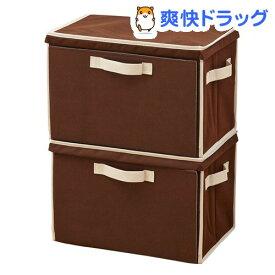 重ねて使える 下扉整理箱 2コセット ブラウン 1007971(1セット)