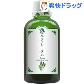 ホメオパシージャパン マザーチンクチャー エクィシータム 大(100ml)【HJマザーチンクチャー】