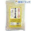 マエダ きらりもち麦(500g)