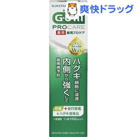 ガム(G・U・M) 薬用 歯周プロケア ペースト(90g)【ガム(G・U・M)】