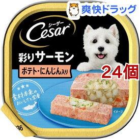 シーザー サーモン風味 ポテトとにんじん入り (100g*24コセット)【d_cesar】【シーザー(ドッグフード)(Cesar)】[ドッグフード]