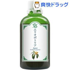 ホメオパシージャパン マザーチンクチャー エリオボトリア(100ml)【ホメオパシージャパン】