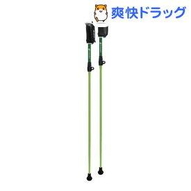 レビータ ポータブル+ ショート グリーン(2本1組)