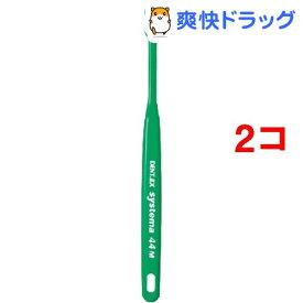 デント EX システマ 44 ふつう(1本入*2コセット)【デント(DENT.)】