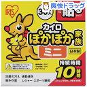 アイリスオーヤマ ぽかぽか家族 貼るミニ PKN-30HM(30コ入)【アイリスオーヤマ】