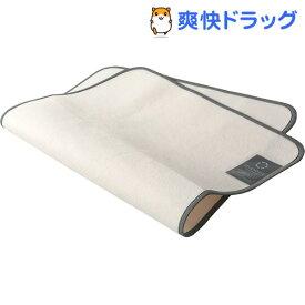 東京西川 除湿シート シングル 対応(90*120cm) 洗える 軽量 日本製(1枚入)【東京西川】
