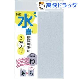 くれ竹 水書練習用紙 無地 B5(3枚入)【呉竹】
