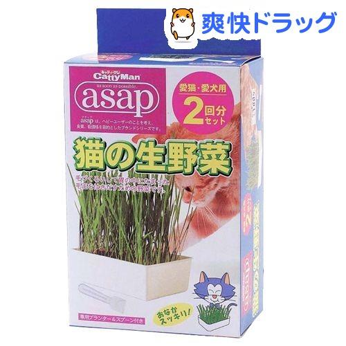 キャティーマン アサップ(asap) 猫の生野菜(2回分)【171124_soukai】【171110_soukai】【アサップ(asap)】