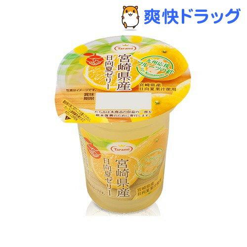 フルーツの絆 宮崎県産日向夏ゼリー(165g)