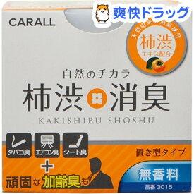 カーオール 柿渋消臭置き型 無香料(110g)【カーオール】