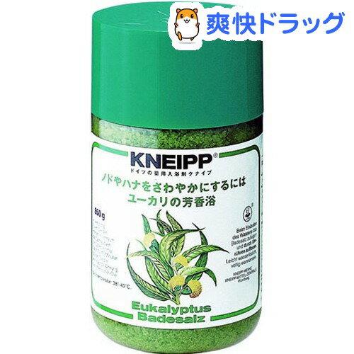 クナイプ バスソルト ユーカリ(850g)【クナイプ(KNEIPP)】