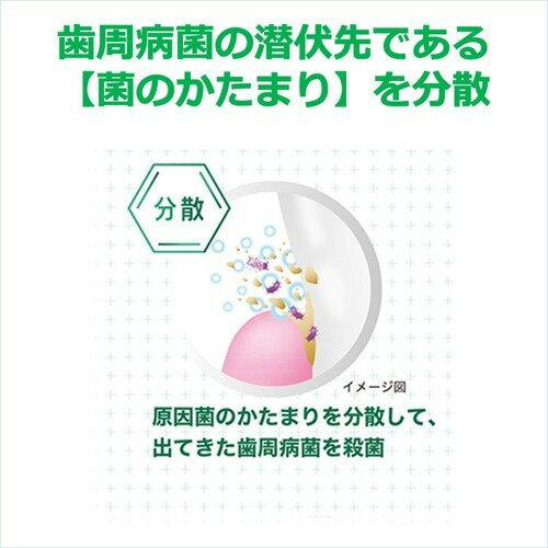ガム(G・U・M)ウェルプラスデンタルリンス低刺激ノンアルコールタイプ