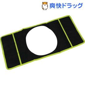 セフティー3 イージーターンチェア用ポーチ ライトグリーン SGCP-2L(1コ入)【セフティー3】