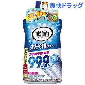 洗浄力 洗たく槽クリーナー(550g)