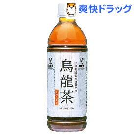 神戸居留地 烏龍茶(500ml*24本入)【神戸居留地】