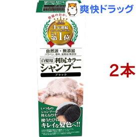利尻カラーシャンプー ブラック(200ml*2コセット)[白髪隠し]