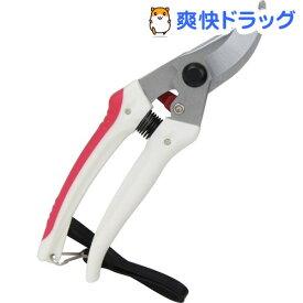 千吉 ガーデン剪定鋏 ブリスター SGP-43B(1コ入)【千吉】