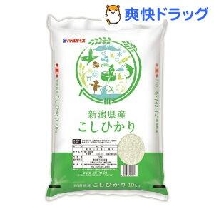 令和2年産 新潟県産コシヒカリ(10kg)【パールライス】[米]