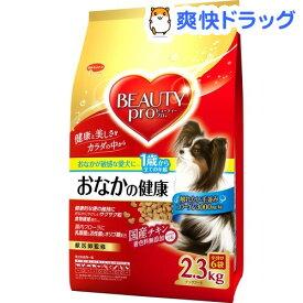 ビューティープロ ドッグ おなかの健康 1歳から 小分け6袋入(2.3kg)【ビューティープロ】