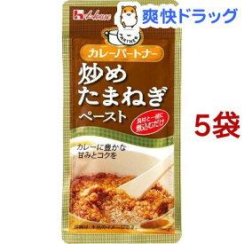 カレーパートナー 炒めたまねぎペースト(40g*5袋セット)【カレーパートナー】