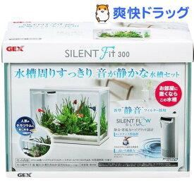 サイレントフィット 300(1コ入)