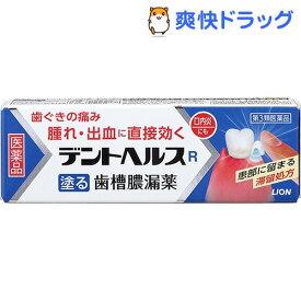 【第3類医薬品】デントヘルスR(40g)【b6u】【デントヘルス】