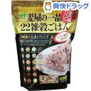 石橋工業 麦屋一品22雑穀ごはん(30g*18本入)