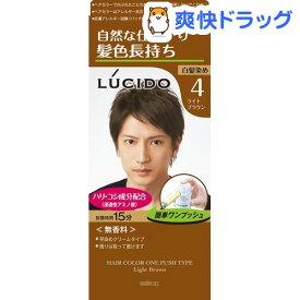 ルシード ワンプッシュケアカラー ライトブラウン(100g)【ルシード(LUCIDO)】[白髪染め]