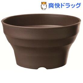 フレグラーボール ダークブラウン 36型(1コ入)【フレグラー】