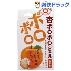 あんず本舗 杏ポロポロジェル(100g)