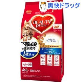 ビューティープロ キャット 猫下部尿路の健康維持 1歳から(560g)【ビューティープロ】[キャットフード]
