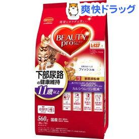 ビューティープロ キャット 猫下部尿路の健康維持 11歳以上(560g)【ビューティープロ】[キャットフード]