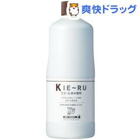きえーる 配水管用 ボトルタイプ(1L)【きえーる】