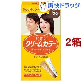 パオンクリームカラー 5G(2箱セット)【パオン】[白髪染め]