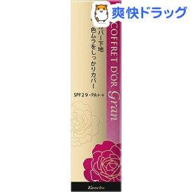コフレドールグラン カバーフィットベースUV(25g)【コフレドールグラン(COFFRET D'OR Gran)】[化粧直し ツヤ カバー力]