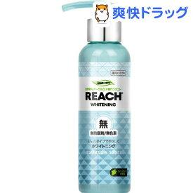 リーチ 歯みがきポンプ式 グリーングレープの香り(180g)【REACH(リーチ)】