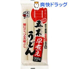 五木食品 早煮えうどん(360g*20袋入)