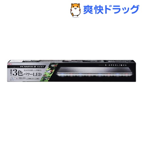 クリアLED パワーIII 600(1コ入)【クリアLED】【送料無料】