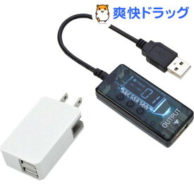 サンコー USB24hタイマースイッチ+2ポートUSB-ACアダプタセット DTWTUSBS+UAC221(1セット)